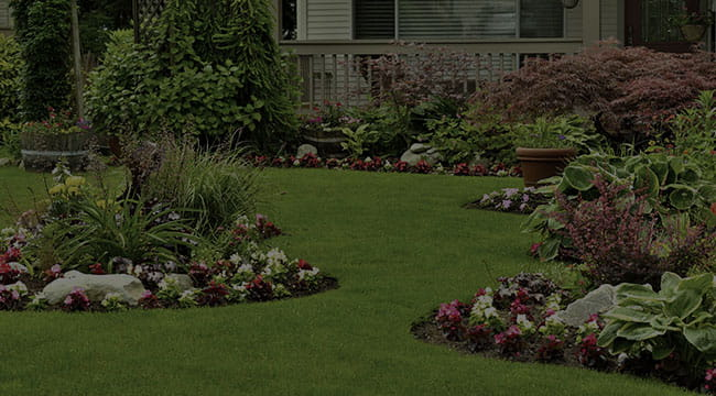 Independence Landscape Design